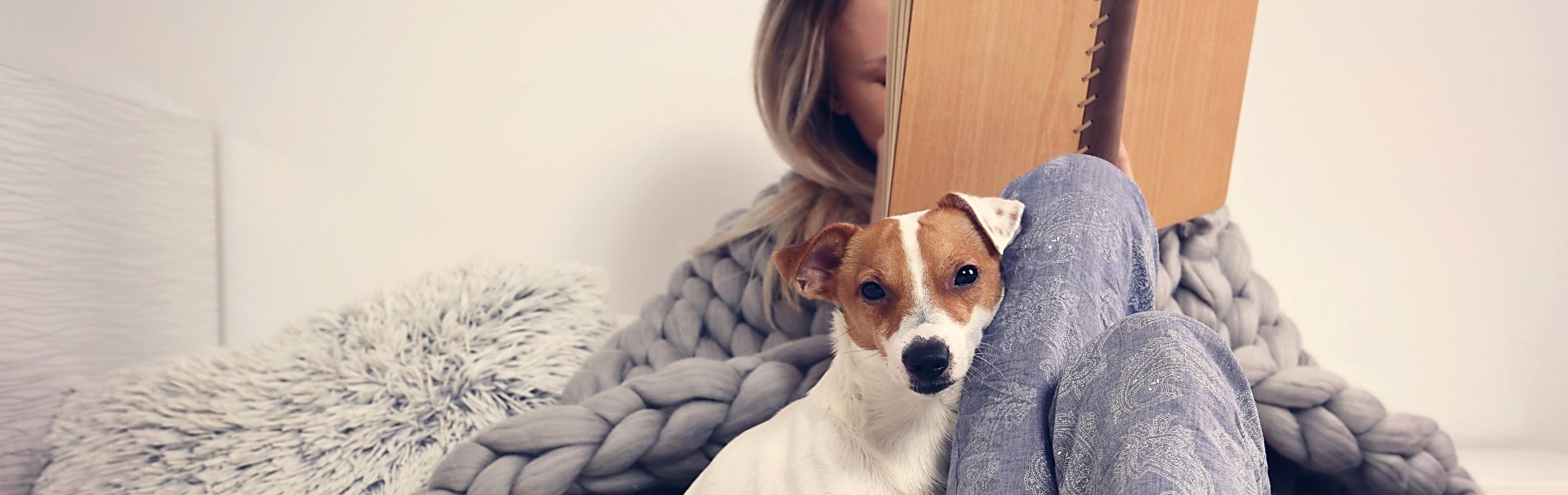 daily choice Hund Trockenfutter Nassfutter Zubehör