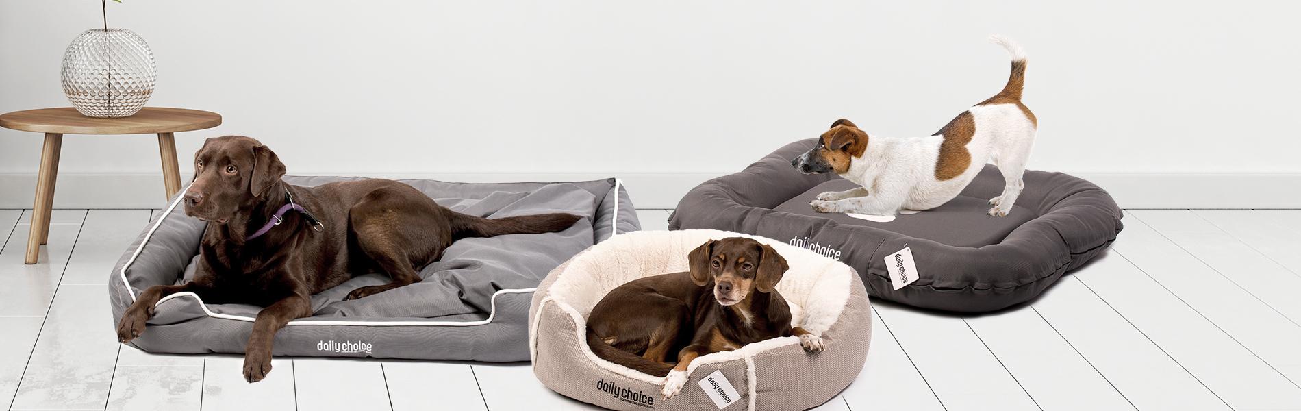 daily choice Hund Zubehör Hundebett Leinen Geschirr