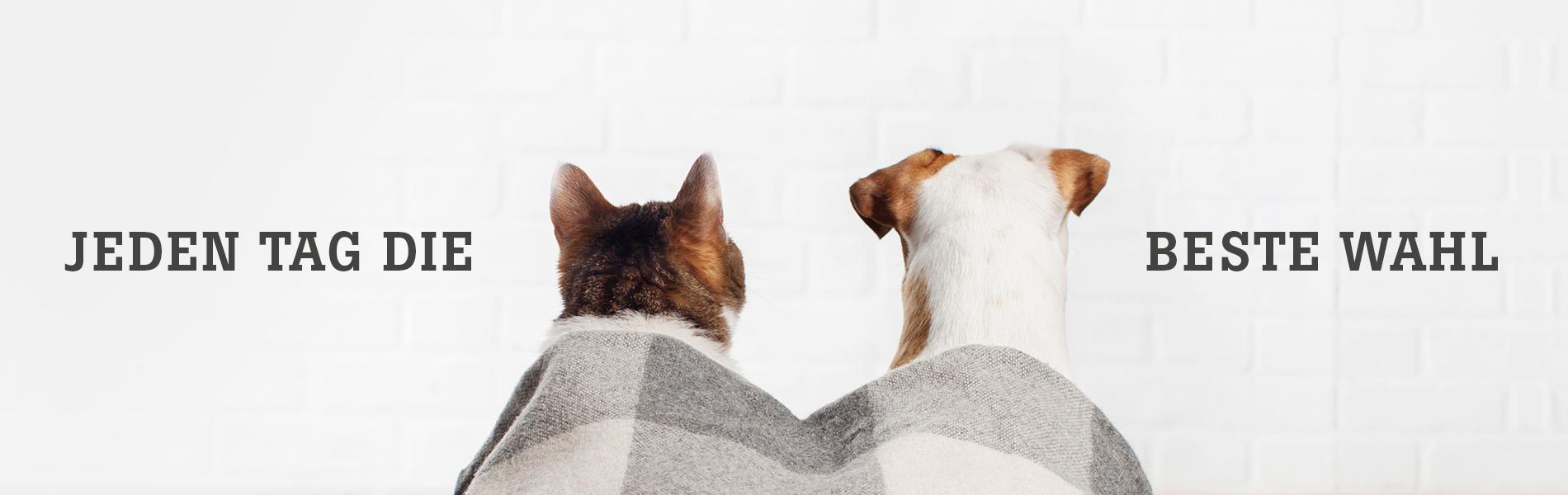 daily choice Hundefutter Katzenfutter für jeden Tag