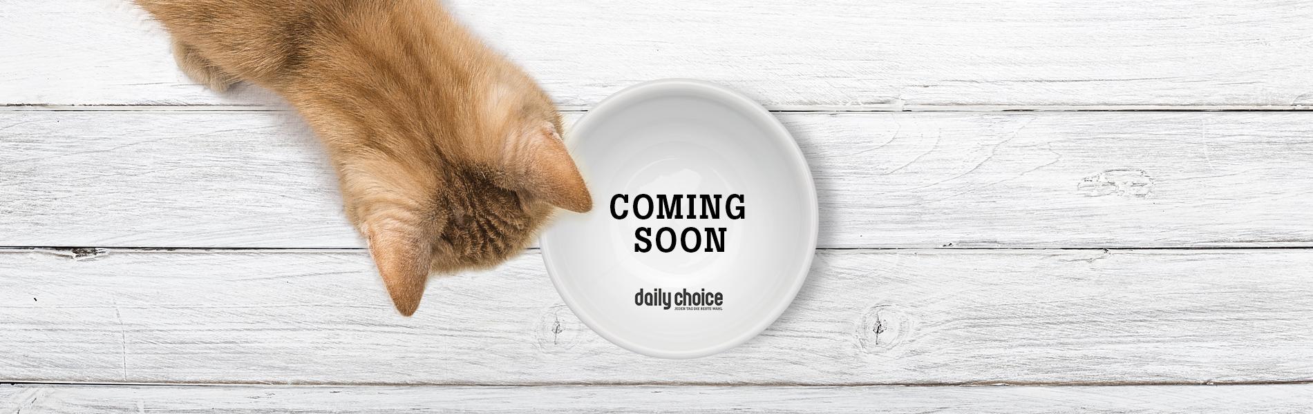 daily choice Katzenfutter coming soon