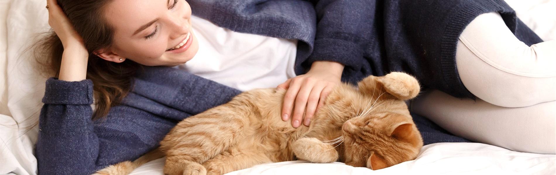 daily choice hochwertiges Katzenfutter getreidefrei